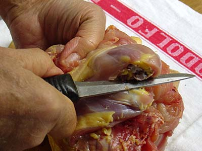 Boning a chicken: Another way to bone the legs