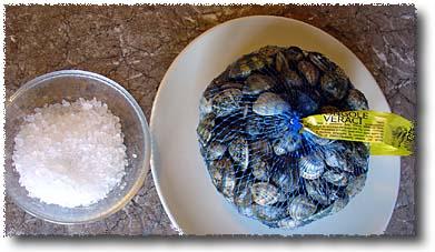 Preparing Live Clams: Clams & Sea Salt