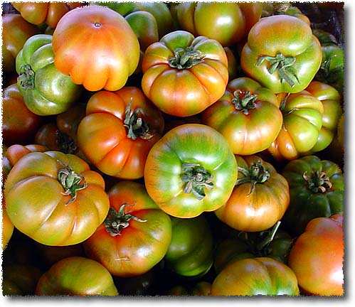 Pomodori Merinda, Merinda Heirloom Tomatoes